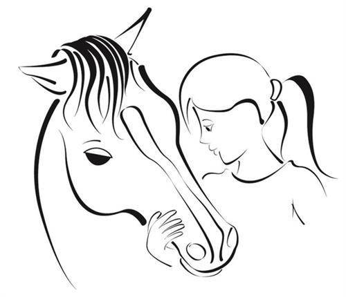 Sonrise equestrian foundation m4hsunfo Images
